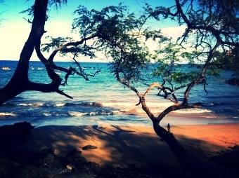 Maui-874041-edited